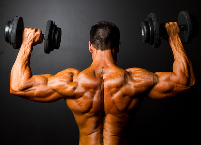 bodybuilder training plan ruecken - © michaeljung - Fotolia.com